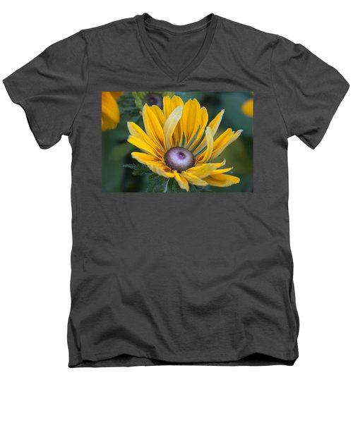 Floral 2 Men's V-Neck T-Shirt