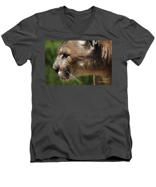 Men's V-Neck T-Shirt featuring the photograph Florida Panther Profile by Meg Rousher