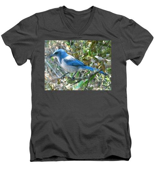 Florida Scrub Jay Men's V-Neck T-Shirt