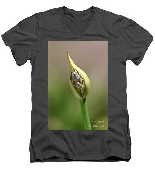 Flower-agapanthus-bud Men's V-Neck T-Shirt