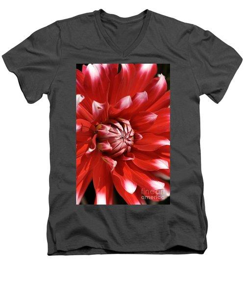 Flower- Dahlia-red-white Men's V-Neck T-Shirt