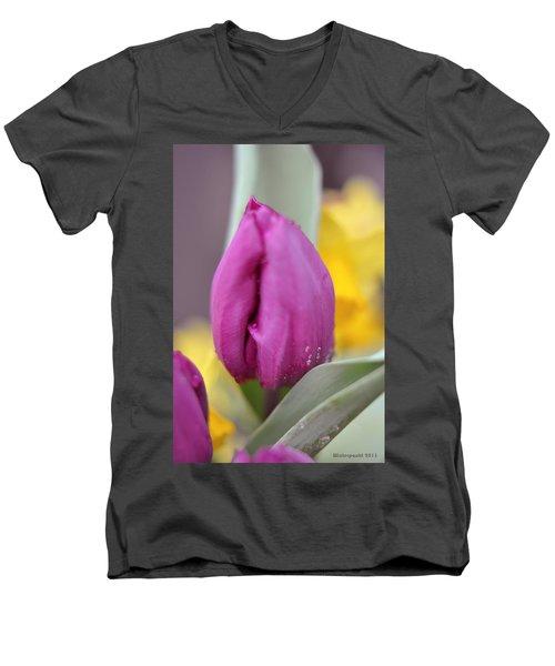 Flower In The Spring Men's V-Neck T-Shirt