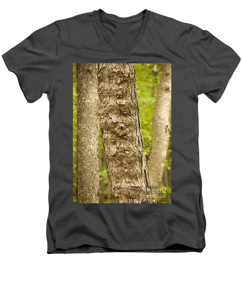 Fluted Tree Men's V-Neck T-Shirt by Carol Lynn Coronios