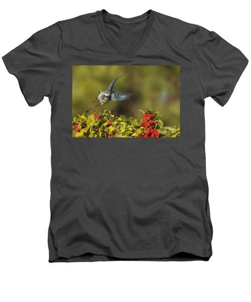 Flying Florida Scrub Jay Photo Men's V-Neck T-Shirt