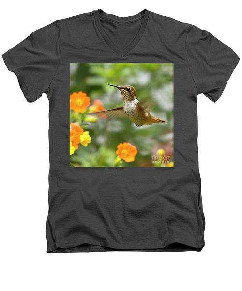 Flying Scintillant Hummingbird Men's V-Neck T-Shirt