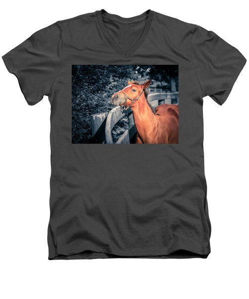 Foal By The Fence Men's V-Neck T-Shirt