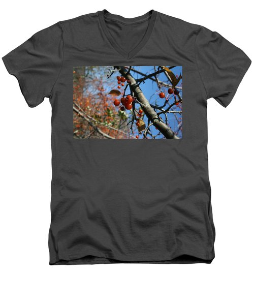 Men's V-Neck T-Shirt featuring the photograph Focused by Neal Eslinger