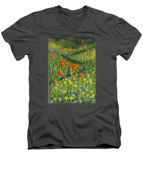 Poppy Trail Men's V-Neck T-Shirt