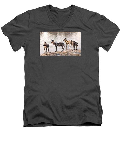 Men's V-Neck T-Shirt featuring the photograph Four Alert African Wild Dogs by Liz Leyden
