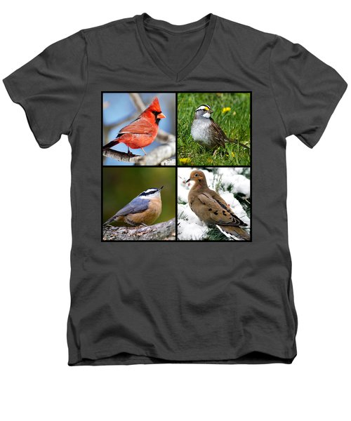 Men's V-Neck T-Shirt featuring the photograph Four Seasons Birds Square by Christina Rollo