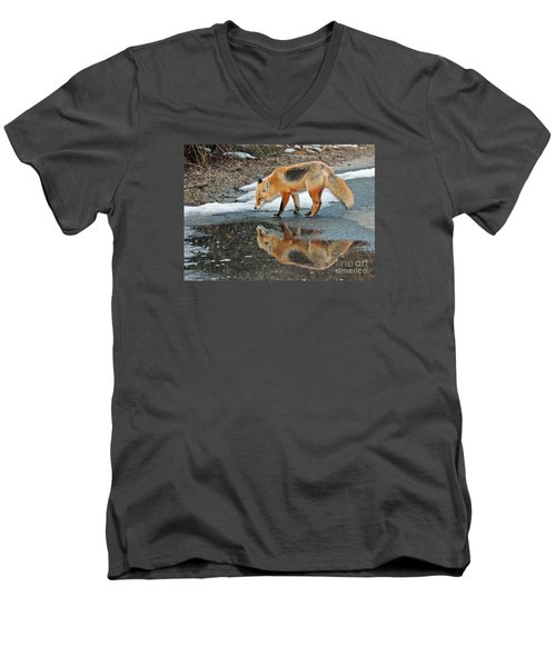 Men's V-Neck T-Shirt featuring the photograph Fox Reflection by Sami Martin
