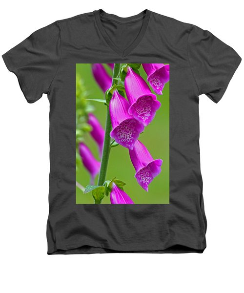 Foxglove Digitalis Purpurea Men's V-Neck T-Shirt