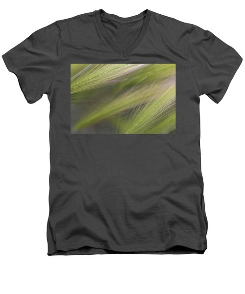 Foxtail Fans Men's V-Neck T-Shirt