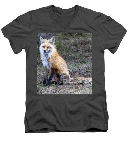 Foxy Lady  Men's V-Neck T-Shirt by Fiona Kennard
