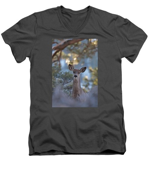 Framed Deer Head And Shoulders Men's V-Neck T-Shirt by Duncan Selby