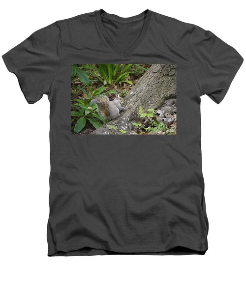 Men's V-Neck T-Shirt featuring the photograph Friendly Squirrel by Marilyn Wilson
