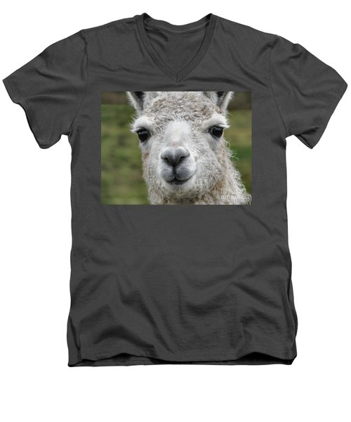 Friends From The Field Men's V-Neck T-Shirt