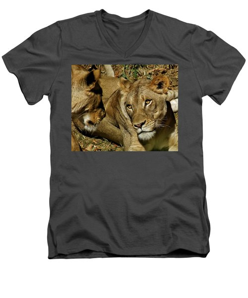 Men's V-Neck T-Shirt featuring the photograph Friends by Jean Goodwin Brooks