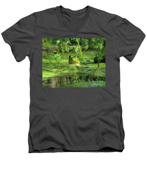 Frog Men's V-Neck T-Shirt by Douglas Stucky