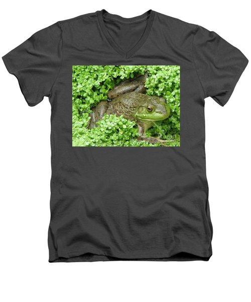 Frog Men's V-Neck T-Shirt by DejaVu Designs