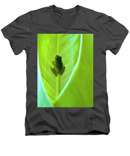 Men's V-Neck T-Shirt featuring the photograph Frog In Blankie by Faith Williams