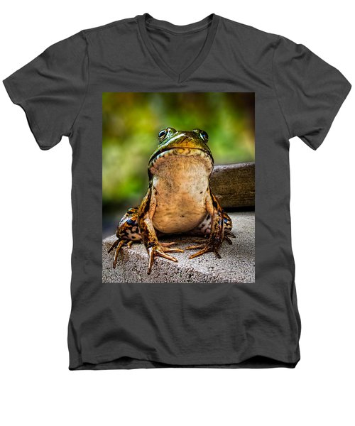 Frog Prince Or So He Thinks Men's V-Neck T-Shirt