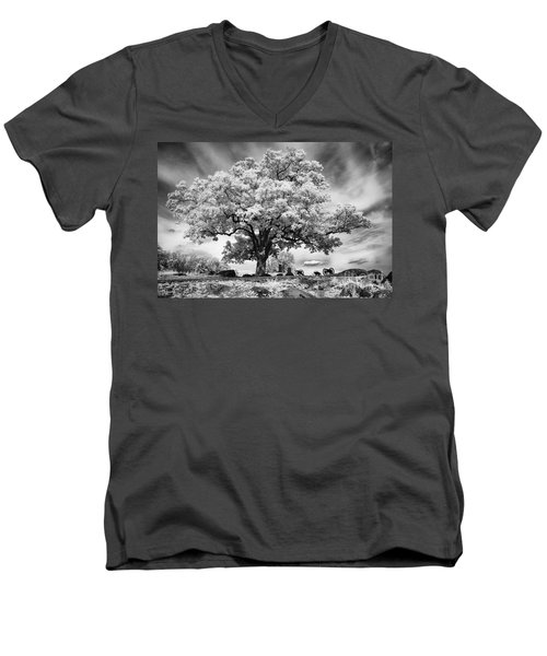 From The Top Of Devil's Den Men's V-Neck T-Shirt
