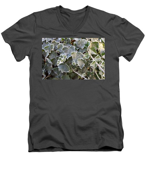 Men's V-Neck T-Shirt featuring the painting Frozen Hedera Helix 2 by Felicia Tica