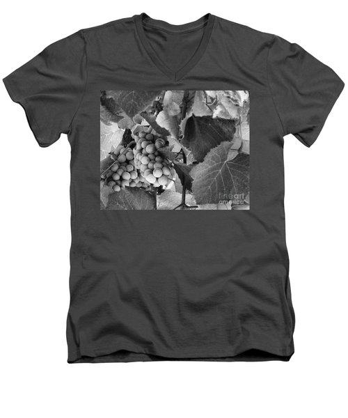 Fruit -grapes In Black And White - Luther Fine Art Men's V-Neck T-Shirt