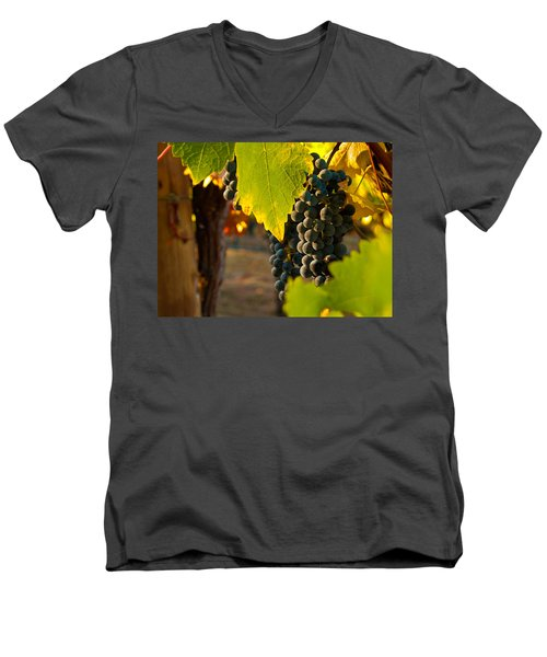 Fruit Of The Vine Men's V-Neck T-Shirt by Bill Gallagher