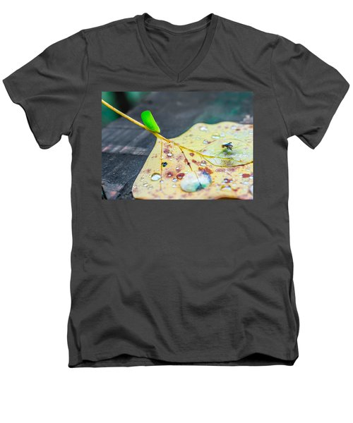 Men's V-Neck T-Shirt featuring the photograph Fulgoroidea On A Leaf by Rob Sellers