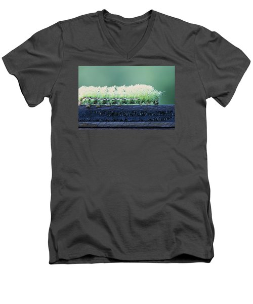 Men's V-Neck T-Shirt featuring the photograph Fuzzy Caterpillar by Jane Eleanor Nicholas