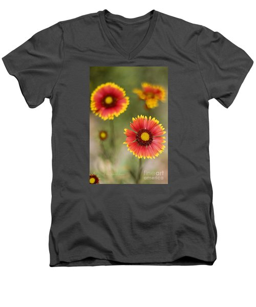 Gaillardia 'arizona Sun' Men's V-Neck T-Shirt