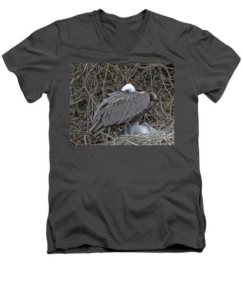Galapagos - Watchful Pelican Men's V-Neck T-Shirt