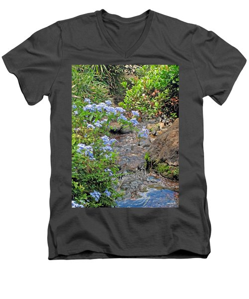 Garden Stream Men's V-Neck T-Shirt