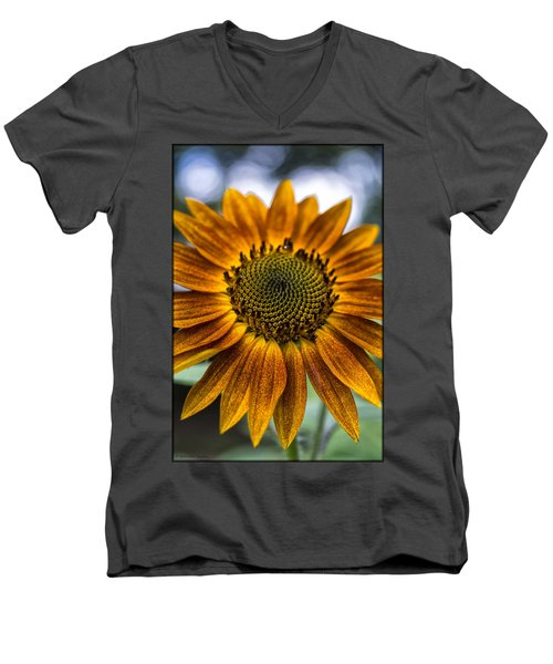 Garden Sunflower Men's V-Neck T-Shirt