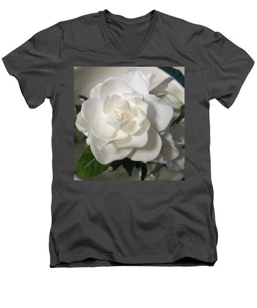 Gardenia Bowl Men's V-Neck T-Shirt