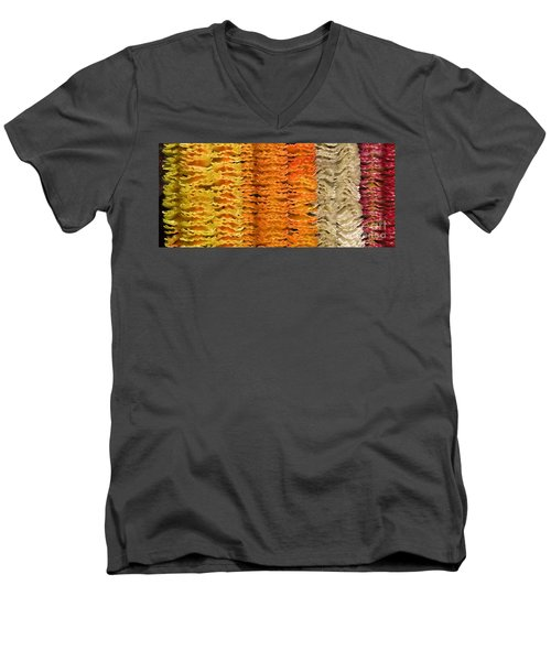 Men's V-Neck T-Shirt featuring the photograph Garlands by Mini Arora