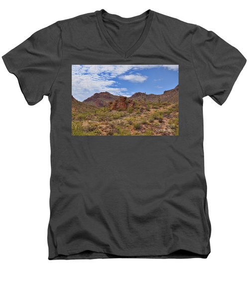 Gates Pass Scenic View Men's V-Neck T-Shirt