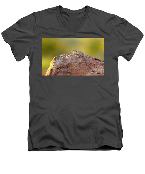 Getting Some Sun Men's V-Neck T-Shirt