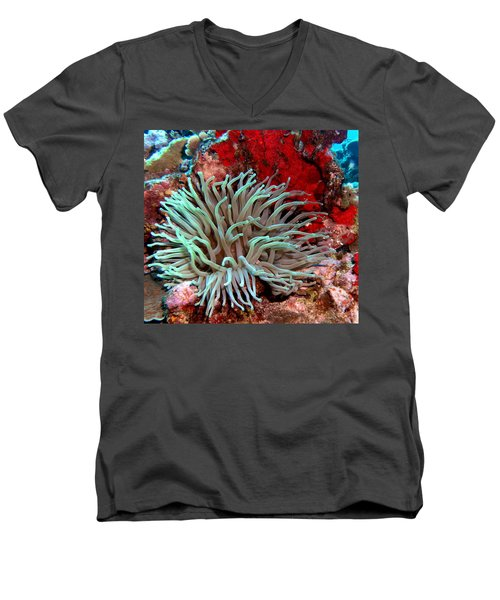 Giant Green Sea Anemone Against Red Coral Men's V-Neck T-Shirt by Amy McDaniel
