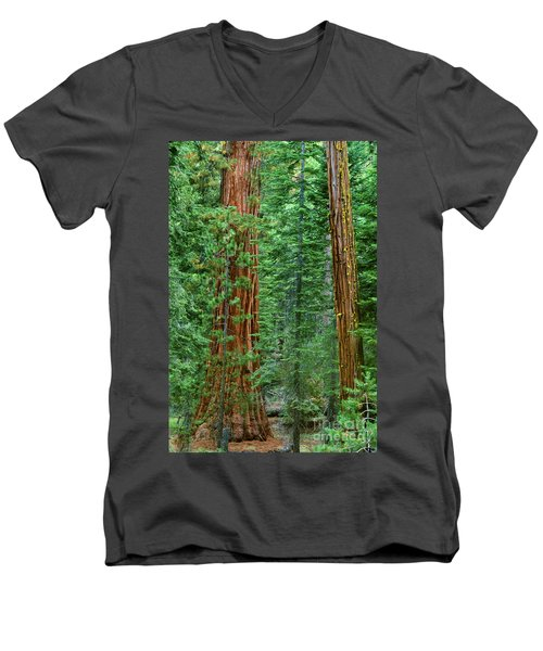 Giant Sequoias Sequoiadendron Gigantium Yosemite Np Ca Men's V-Neck T-Shirt by Dave Welling