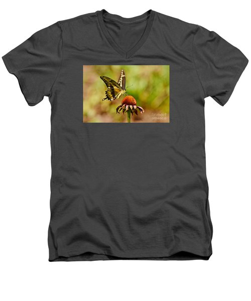 Giant Swallowtail Butterfly Men's V-Neck T-Shirt by Kathy Baccari