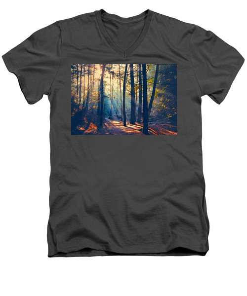 Glorious Forest Morning Men's V-Neck T-Shirt by Diane Alexander