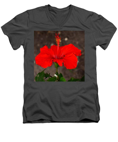 Glowing Red Hibiscus Men's V-Neck T-Shirt