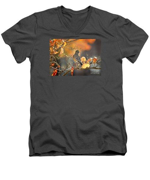 Glowing Robin 2 Men's V-Neck T-Shirt by Nava Thompson