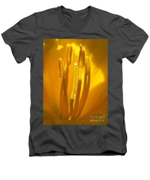 God's Light Shining Through Men's V-Neck T-Shirt