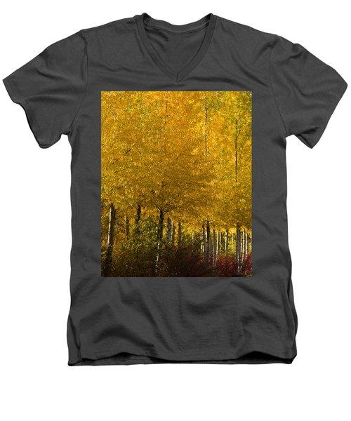 Men's V-Neck T-Shirt featuring the photograph Golden Aspens by Don Schwartz