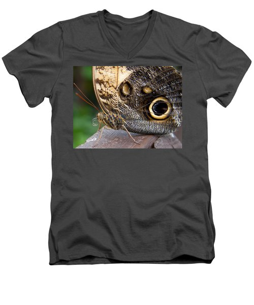 Golden Butterfly Men's V-Neck T-Shirt