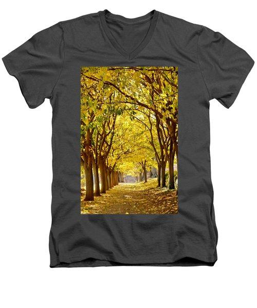 Golden Canopy Men's V-Neck T-Shirt